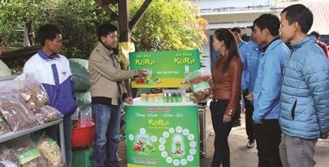 KORA, la start-up qui mise sur les plantes sauvages hinh anh 2
