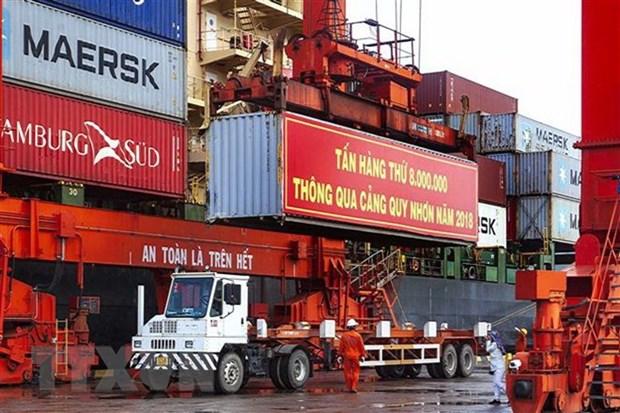 Le port de Quy Nhon accueille la 8 millionieme tonne de fret hinh anh 1