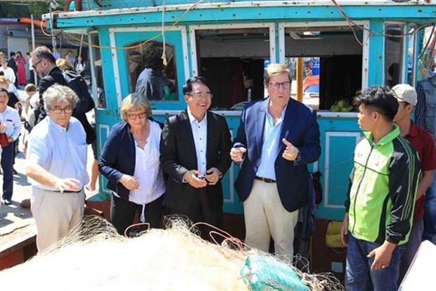 Le Vietnam met tout en œuvre pour construire une peche durable hinh anh 1