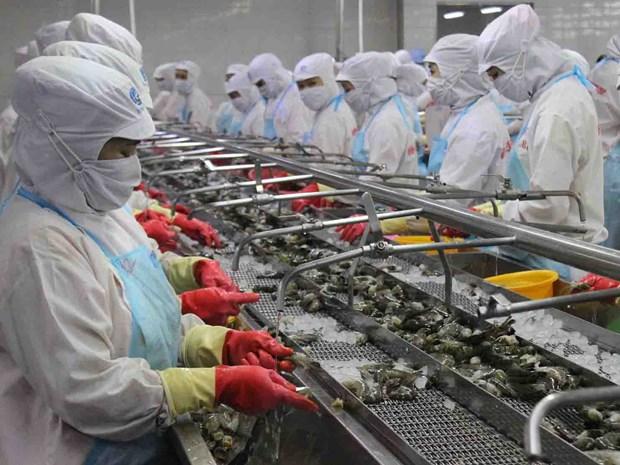 Le Vietnam, 3e exportateur de crevettes aux Etats-Unis en octobre hinh anh 1