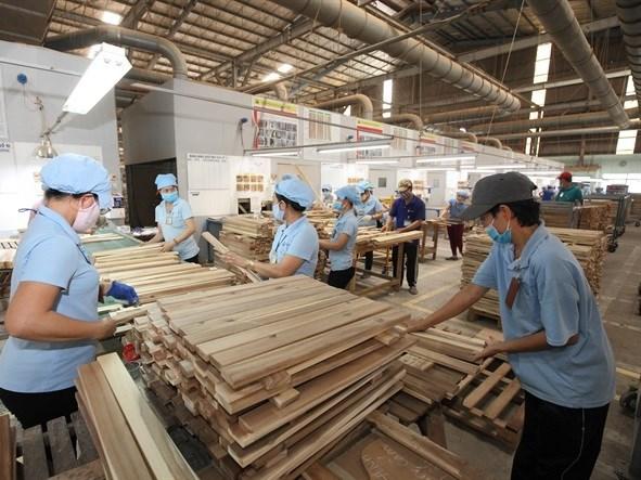 Les exportations de produits sylvicoles atteignent un record de 9,3 milliards de dollars hinh anh 1