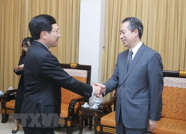 Le vice-PM Pham Binh Minh recoit le nouvel ambassadeur de Chine hinh anh 1
