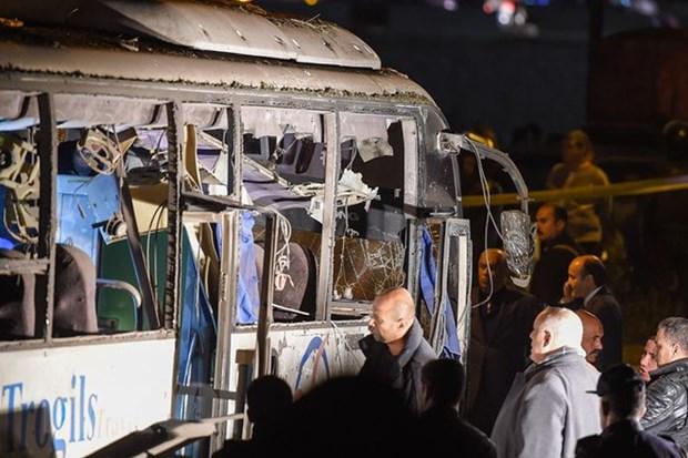 Les voyagistes doivent prendre des mesures pour assurer la securite aux touristes en Egypte hinh anh 1