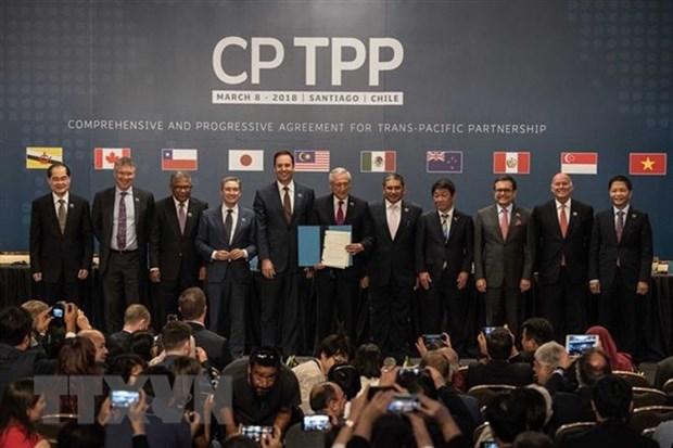 Entree en vigueur officielle de l'accord commercial CPTPP hinh anh 1