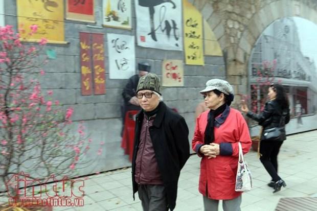 Les Hanoiens fetent le Nouvel An hinh anh 1