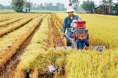 Vers une agriculture 4.0 hinh anh 1