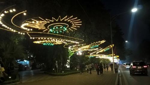 Hanoi : de nombreuses activites pour accueillir le Nouvel An lunaire 2019 hinh anh 1