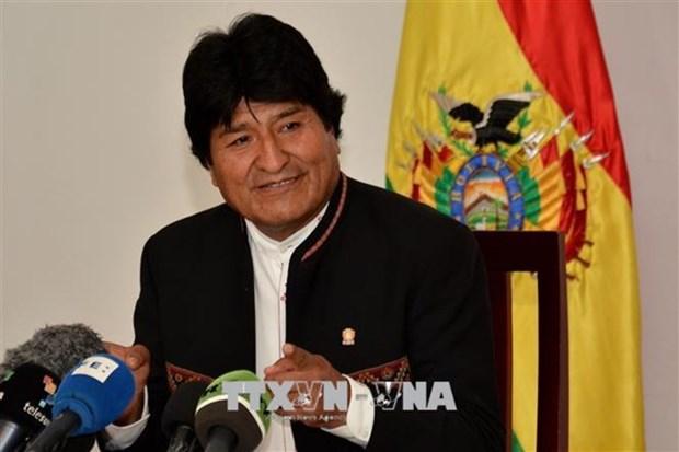 Le president de la Bolivie veut elargir ses liens economiques avec le Vietnam hinh anh 1