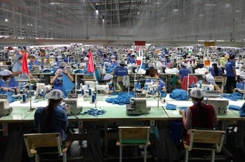 L'economie vietnamienne optimiste pour 2019 hinh anh 2