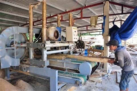 L'APV/FLEGT: les opportunites de la filiere bois vietnamienne hinh anh 2