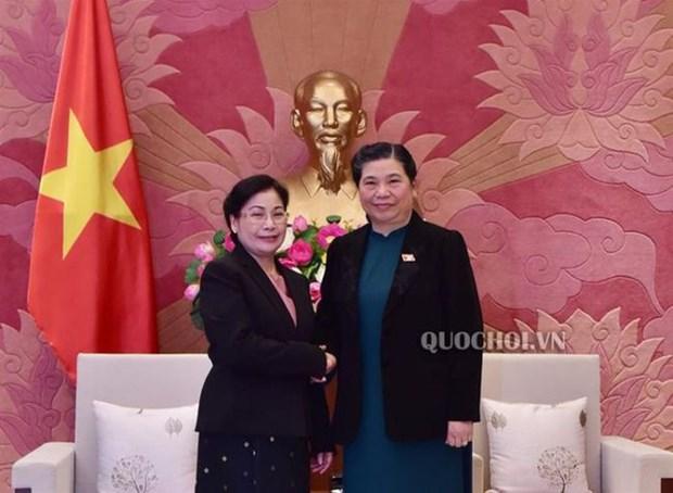 Renforcement des relations Vietnam-Laos dans l'audit hinh anh 1