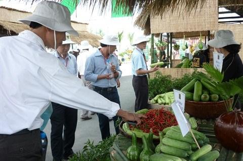 Expansion des superficies de production agricole high-tech a Ho Chi Minh-Ville hinh anh 1