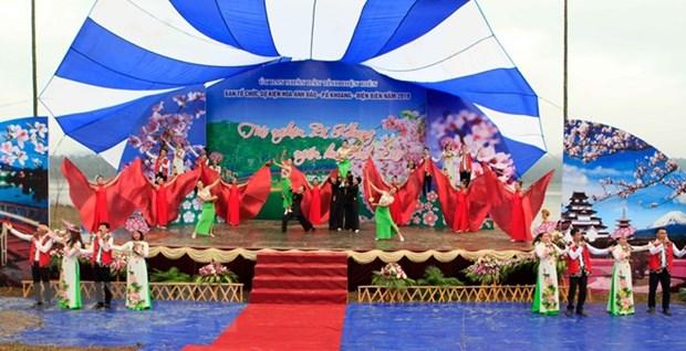 Deuxieme festival des fleurs de cerisier a Pa Khoang hinh anh 1