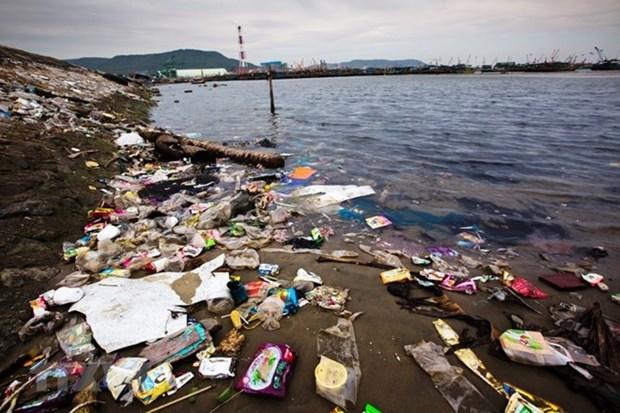 Cooperation internationale dans le reglement des dechets plastiques en Mer Orientale hinh anh 1