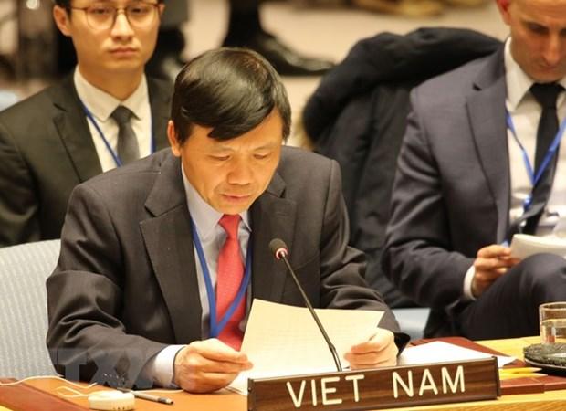 Le Vietnam appelle au respect des resolutions sur la question du Moyen-Orient hinh anh 1