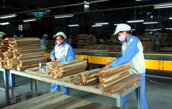 Forte croissance des exportations nationales de bois dans de nombreux marches hinh anh 1