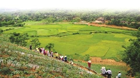 Des villages climato-intelligents pour ameliorer la securite alimentaire et la resilience hinh anh 1