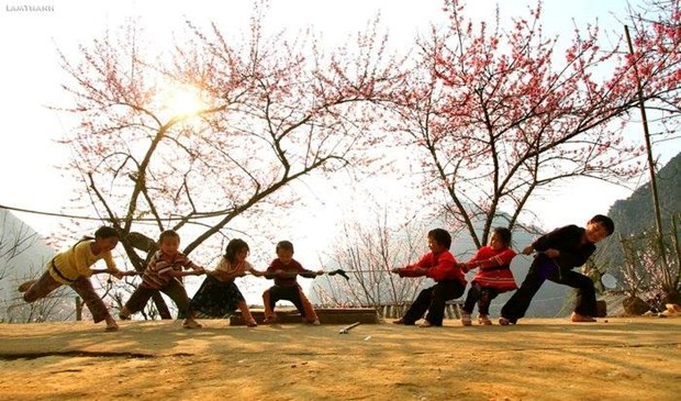 """Plongee dans la """"saison des fleurs sur la pierre"""" a Ha Giang hinh anh 12"""