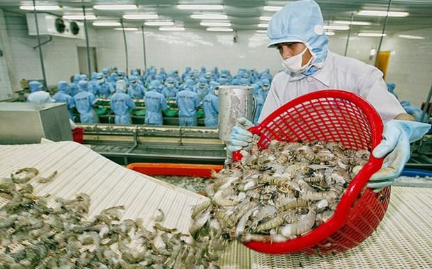 Les exportations nationales de crevettes visent 4 milliards de dollars en 2019 hinh anh 1