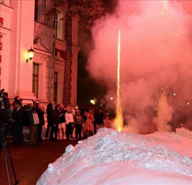 Les Vietnamiens en Russie et au Chili celebrent le Tet traditionnel hinh anh 1