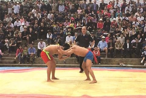 La lutte libre, une particularite du Tet a Hanoi hinh anh 1
