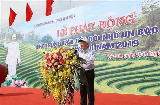 Lancement de la Fete de plantation d'arbres du printemps 2019 hinh anh 1