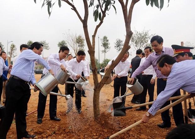 La fete de plantation d'arbres s'ebranle dans plusieurs localites hinh anh 1