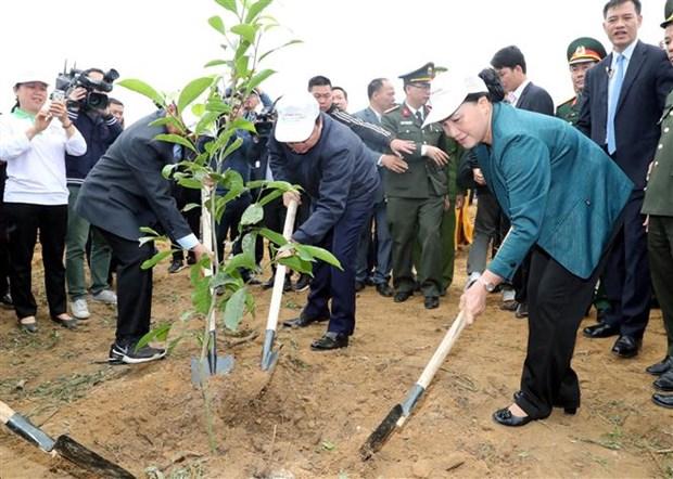 La presidente de l'AN incite a promouvoir la fete de plantation d'arbres hinh anh 1