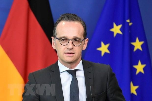 Le ministre allemand des AE regrette que le 2e Sommet Etats-Unis - RPDC ait fini sans aucun accord hinh anh 1