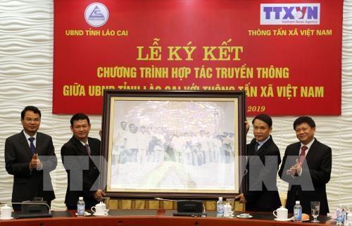 La province de Lao Cai et la VNA scellent leur cooperation hinh anh 1