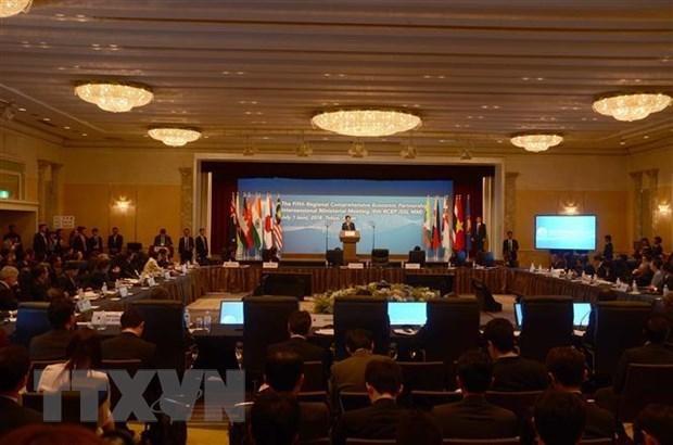 Asie-Pacifique: Les ministres de 16 pays discutent du partenariat economique global regional hinh anh 1