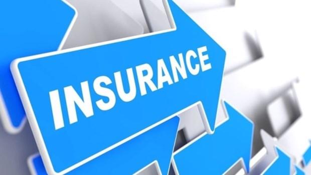 Marche de l'assurance : plan de restructuration jusqu'en 2020 hinh anh 1
