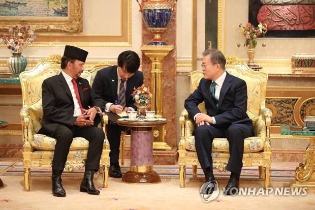 La R. de Coree et le Brunei conviennent d'intensifier la cooperation bilaterale hinh anh 1