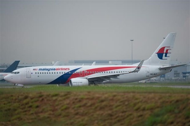 Le destin de Malaysia Airlines sera bientot determine hinh anh 1
