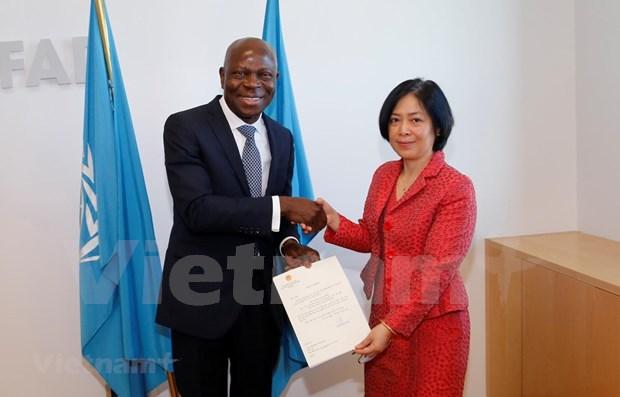 Le FIDA salue la cooperation du gouvernement vietnamien hinh anh 1
