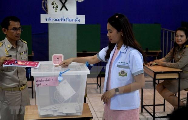 Thailande : le taux de participation au vote anticipe atteint 75% hinh anh 1
