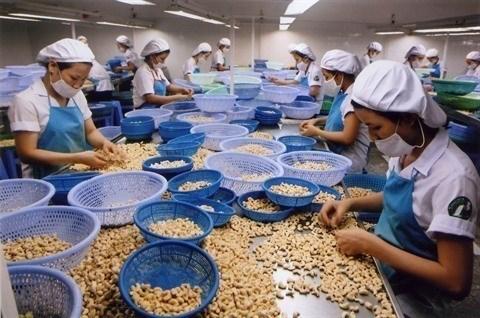 Inde: marche potentiel pour les marchandises vietnamiennes hinh anh 1