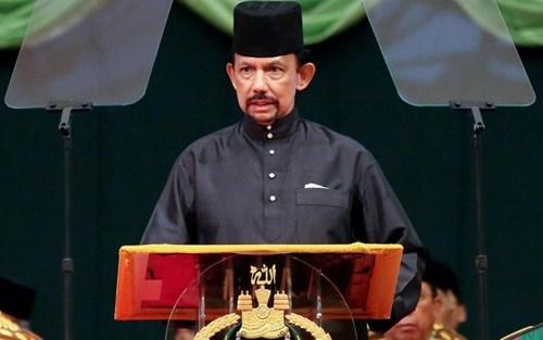 Le sultan du Brunei effectuera une visite d'Etat au Vietnam hinh anh 1