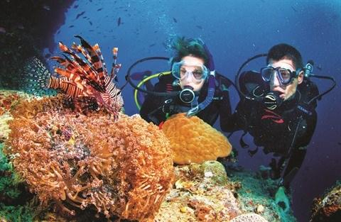 Restauration corallienne pour proteger les ressources aquatiques hinh anh 1