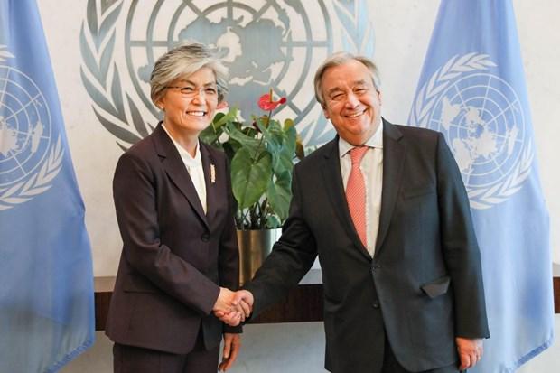 L'ONU et l'ASEAN soutiennent la denuclearisation de la peninsule coreenne hinh anh 1