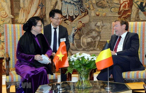 Vietnam-Belgique : entrevue entre Nguyen Thi Kim Ngan et Siegfried Bracke hinh anh 1