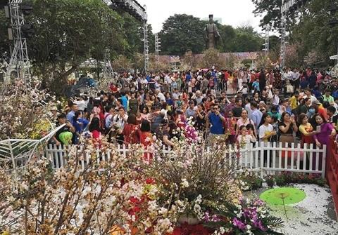 Sakura: Quand Hanoi se met a l'heure japonaise hinh anh 2
