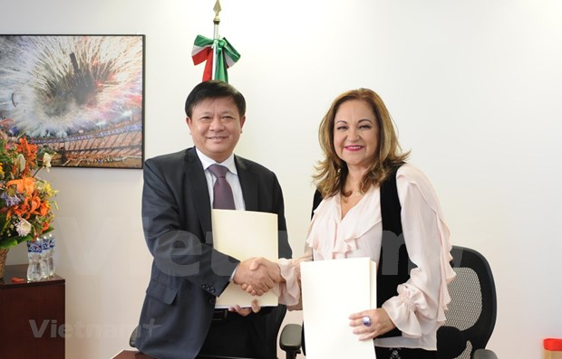 La VNA renforce sa cooperation avec Notimex du Mexique hinh anh 1
