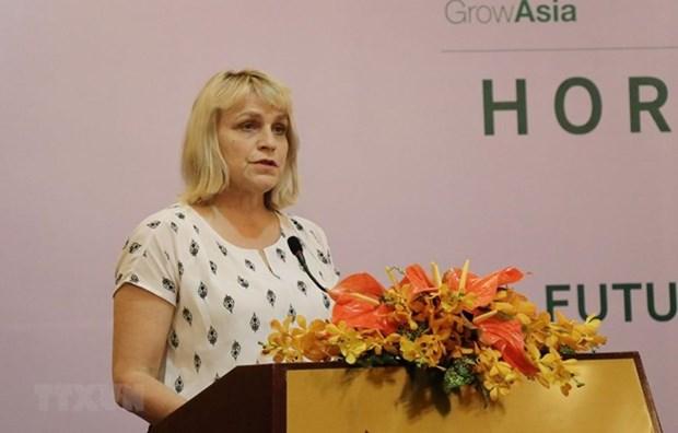 Le Vietnam et les Pays-Bas partagent leurs experiences culturales hinh anh 1