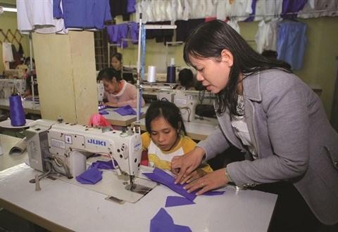 Le Vietnam œuvre pour les droits des handicapes hinh anh 1