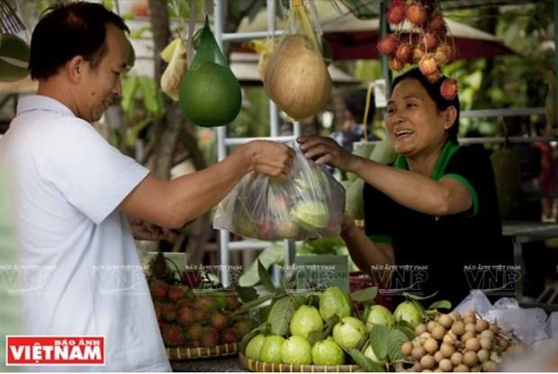 Le delta du Mekong laboure le sillon de l'agrotourisme hinh anh 2