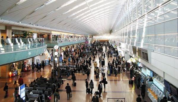 Les passagers aeriens ne doivent pas amener des produits alimentaires au Japon hinh anh 1