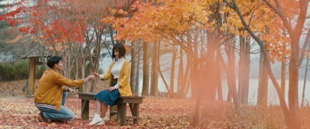 Film : « Promesse d'automne » au debut de l'ete hinh anh 1