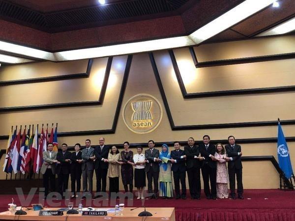 L'ASEAN et l'ONU revisent leur cooperation jusqu'en 2020 hinh anh 1