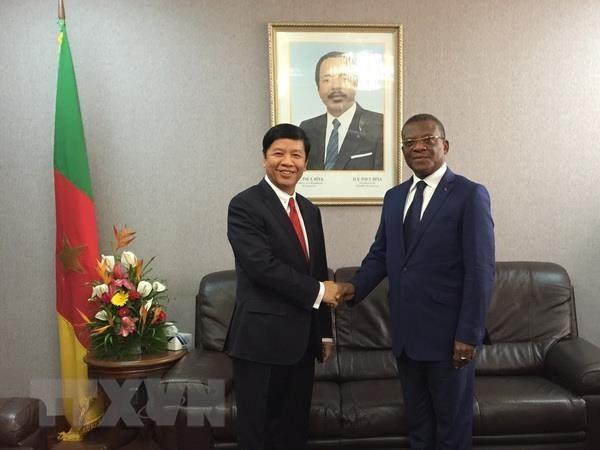 L'envoye special du Premier ministre Nguyen Xuan Phuc travaille au Cameroun hinh anh 1
